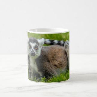 Cute ring tail lemur design products coffee mug