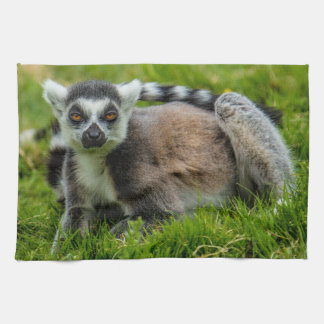 Cute ring tail lemur design products hand towels