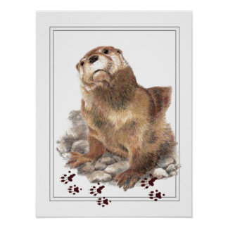 Cute River Otter, Animal Tracks, Wildlife Poster