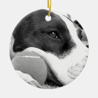 cute sad looking pitbull dog black white with ball round ceramic ornament