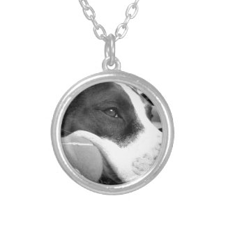 cute sad looking pitbull dog black white with ball silver plated necklace