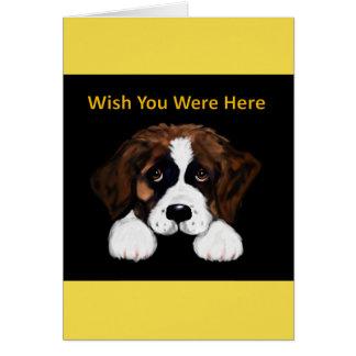 Cute Saint Bernard Card