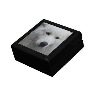 Cute Samoyed Gift Box