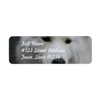 Cute Samoyed Mailing Labels