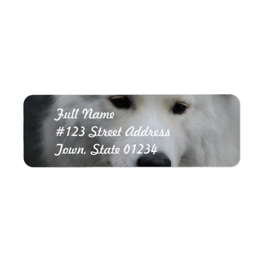 Cute Samoyed Mailing Labels