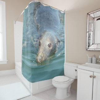 Cute Seal from Cape Cod Shower Curtain