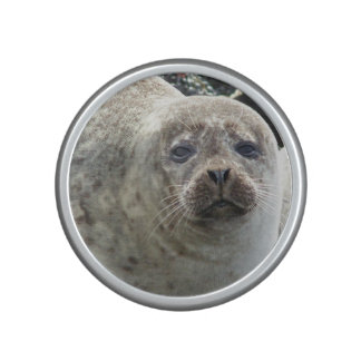 Cute Seal Bluetooth Speaker