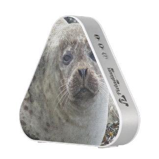 Cute Seal Speaker