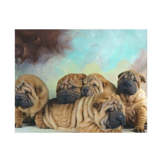 Cute Shar pei puppies Canvas Print