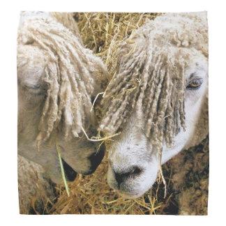 CUTE SHEEP BANDANA