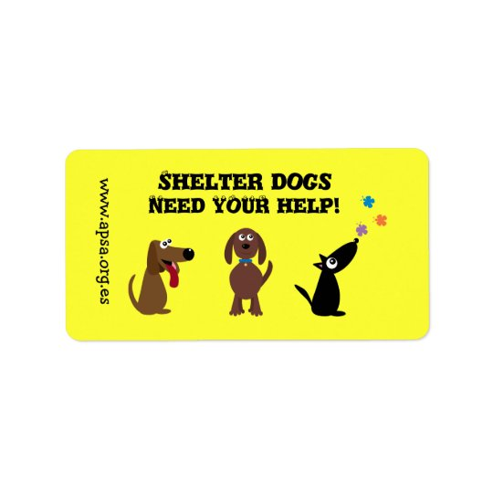 Cute Shelter Dogs Need Your Help Charity