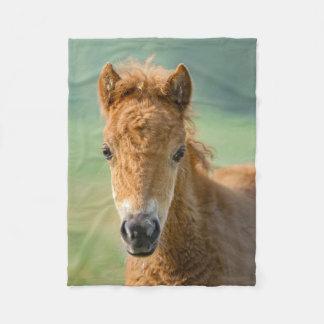Cute Shetland Pony Foal Horse Head Frontal Photo _ Fleece Blanket