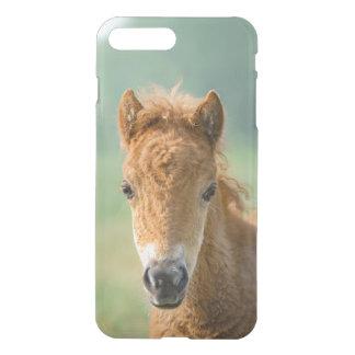 Cute Shetland Pony Foal Horse Head Frontal Photo - iPhone 8 Plus/7 Plus Case