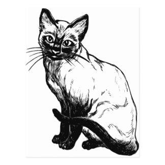 Cute Siamese Cat Postcard