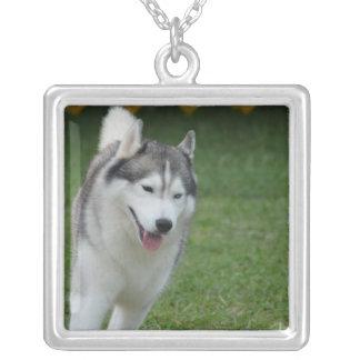 Cute Siberian Husky Square Pendant Necklace