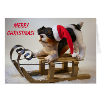 Cute Sled Dog Christmas Card
