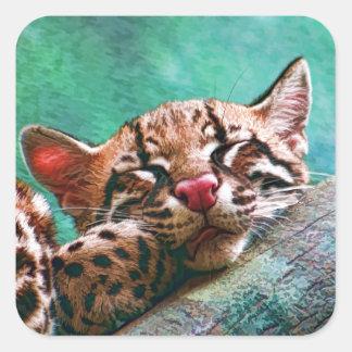 Cute Sleeping Baby Ocelot Kitten Square Sticker