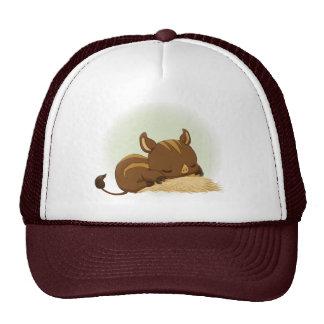 Cute sleeping boar piglet mesh hats