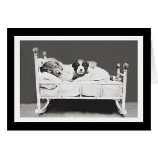 Cute Sleeping Dogs by Harrier Whittier Frees Card