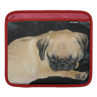 Cute Sleeping Pug Puppy iPad Sleeve