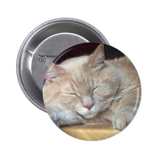 CUTE SLEEPY CAT PINS