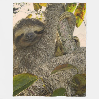 Cute Sloth Fleece Blanket