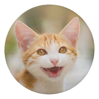 Cute Smiling Kitten Face - Funny Cat Meow Photo ; Eraser