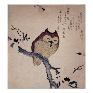 Cute Smiling Owl Japanese Print