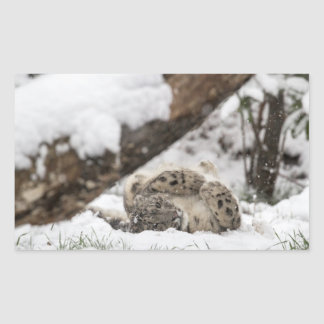 Cute Snow Leopard Plays in Snow Sticker