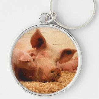 Cute Sow with Piglets Silver-Colored Round Keychain