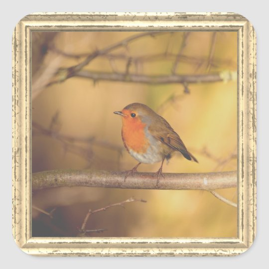 Cute Sparrow Square Sticker