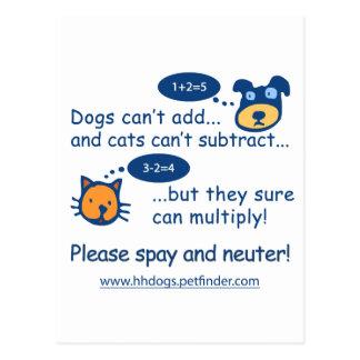 Cute Spay or Neuter Design Post Card