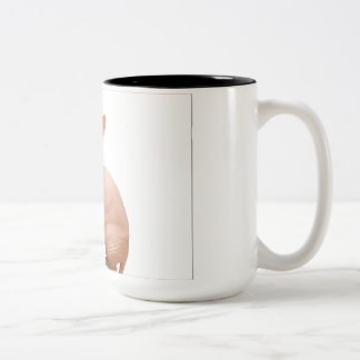 Cute sphynx cat Two-Tone coffee mug