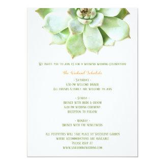 Cute Spring Succulent Wedding Itinerary Enclosure Card