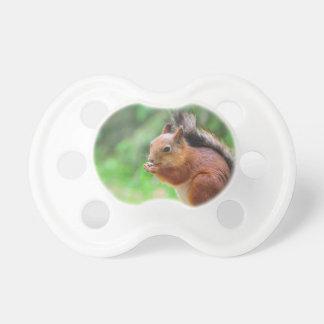 Cute squirrel baby pacifier