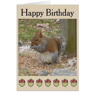 Cute Squirrel Birthday Card