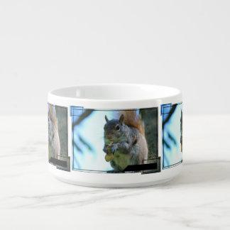 Cute Squirrel Bowl