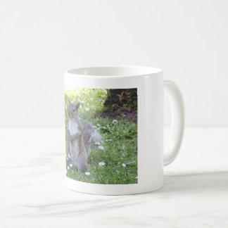Cute Squirrel Coffee Mug