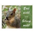 cute squirrel eat well and sleep well post card