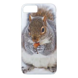 Cute squirrel eating a nut in snow iPhone 7 case