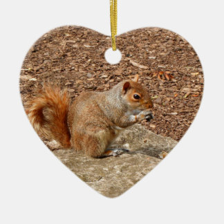 Cute Squirrel eating nuts Ceramic Ornament