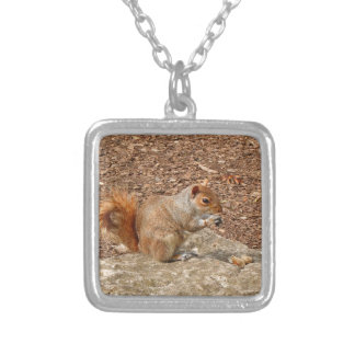 Cute Squirrel eating nuts Silver Plated Necklace