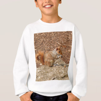 Cute Squirrel eating nuts Sweatshirt