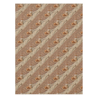 Cute Squirrel eating nuts Tablecloth