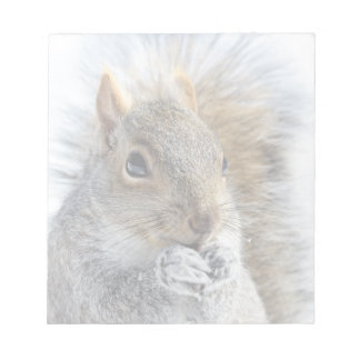 Cute Squirrel in Winter Notepad