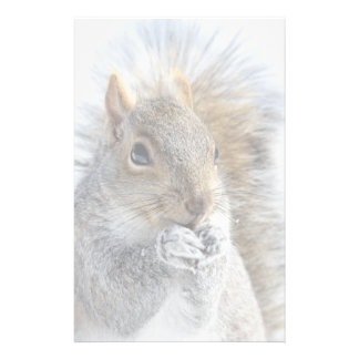 Cute Squirrel in Winter Stationery