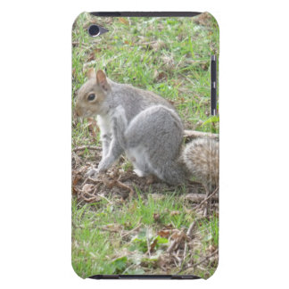 Cute Squirrel Scratching Barely There iPod Cases