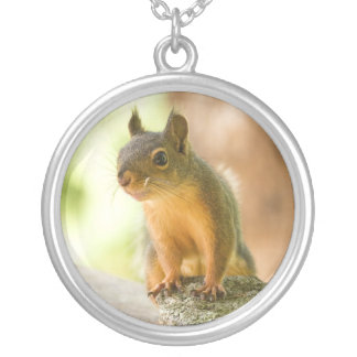 Cute Squirrel Smiling Silver Plated Necklace