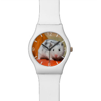 Cute Syrian Hamster White Black Funny - dial-plate Watch