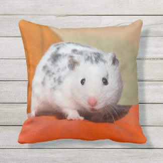 Cute Syrian Hamster White Black Spots Funny Pet on Throw Pillow